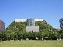 アクロス福岡(ビル緑化)